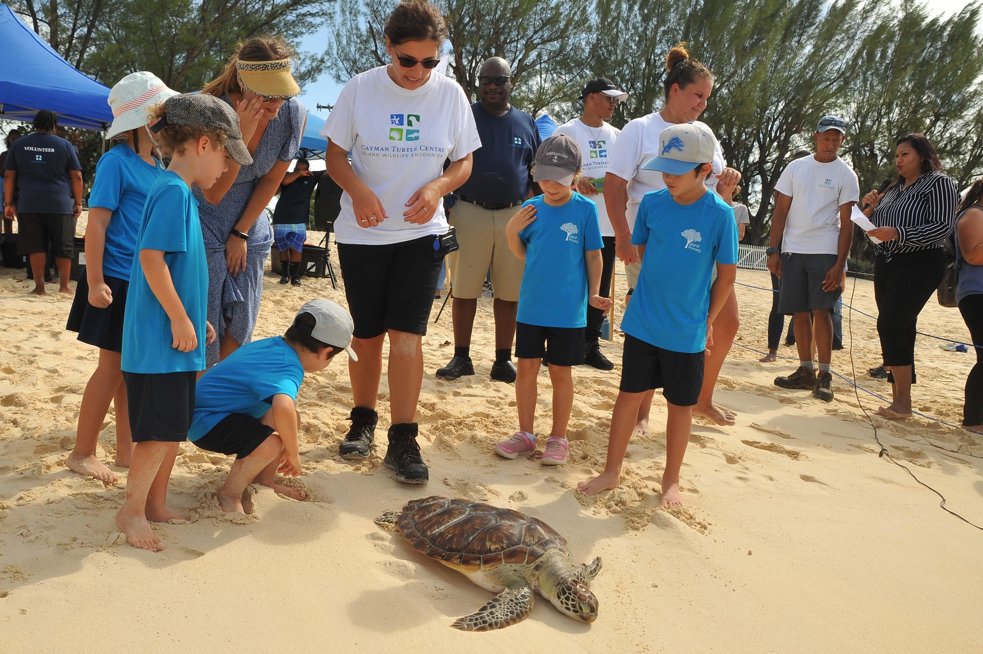 Pirates Turtle Release (5)