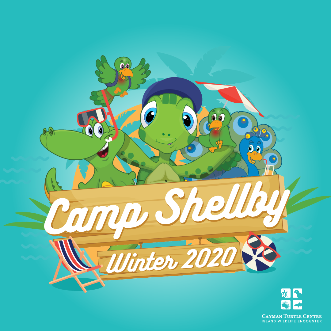Camp Shelby - Winter_1080x1080